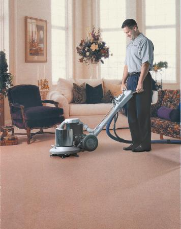 The Best Carpet Cleaning Methods Explained Cannon Carpets
